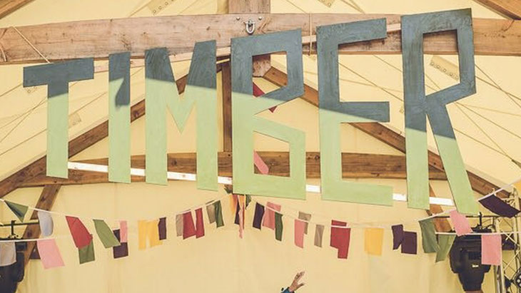 A Weekend Family Ticket to Timber Festival